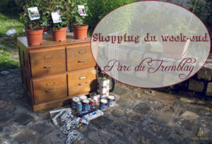 Shopping du week-end au vide-grenier du Parc du Tremblay