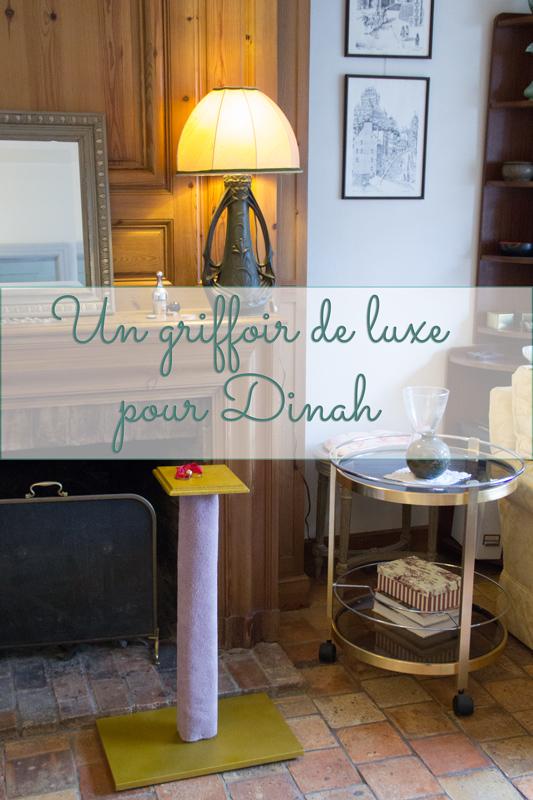 Un griffoir de luxe pour Dinah