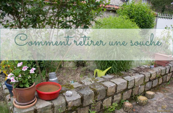 Comment extraire une souche au jardin ?