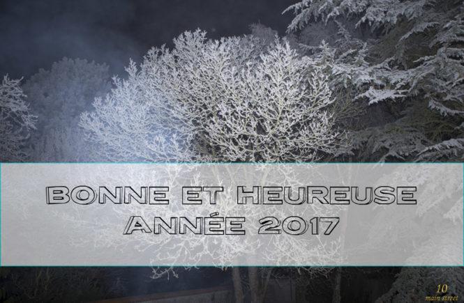 Bonne et heureuse année 2017, sur le blog et ailleurs