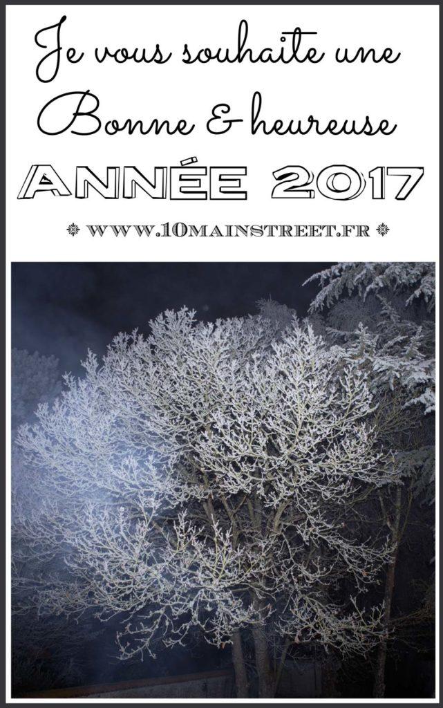 Je vous souhaite une bonne et heureuse année 2017, sur le blog et ailleurs