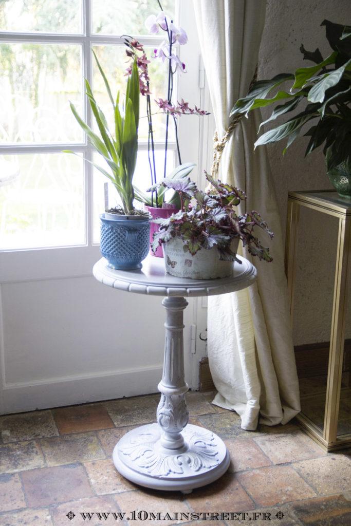 Nouvelles plantes sur le guéridon rénové