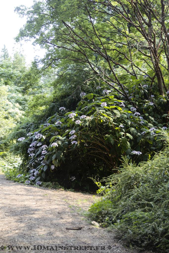 jardin botanique de l'UBC