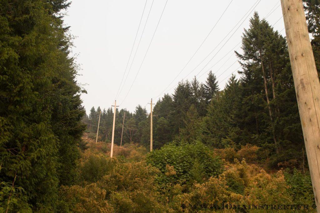 Couleurs canadiennes dans la montagne à Squamish