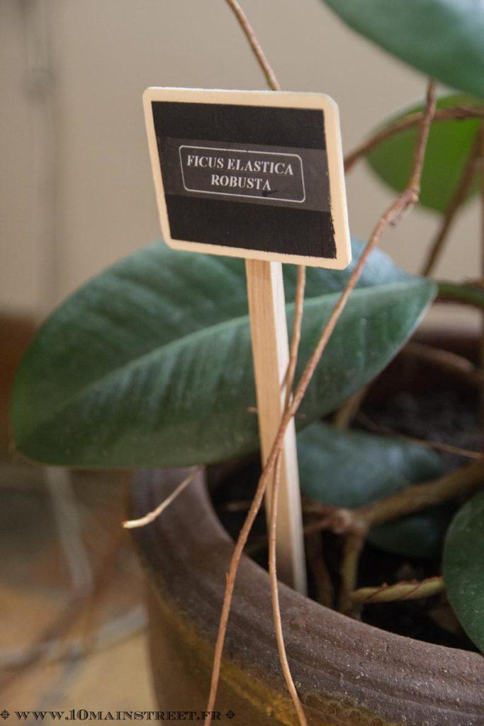 Détail de l'étiquette en bois