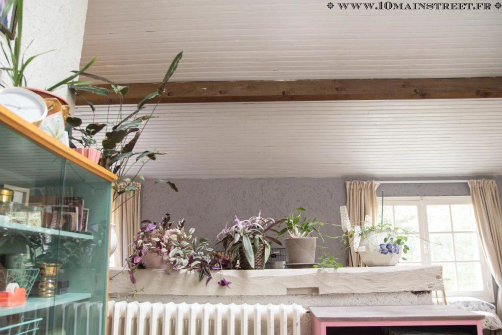 Plafond en lambris peint