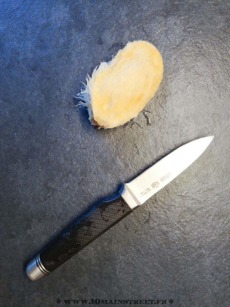 Noyau de mangue