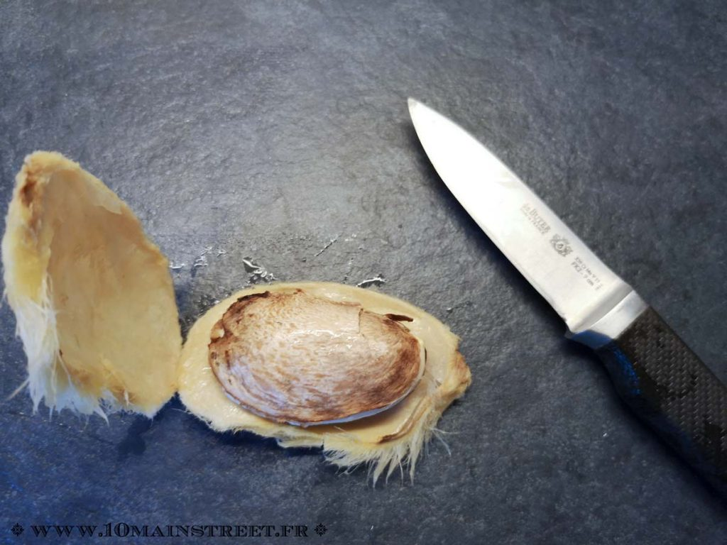 Noyau de mangue ouvert