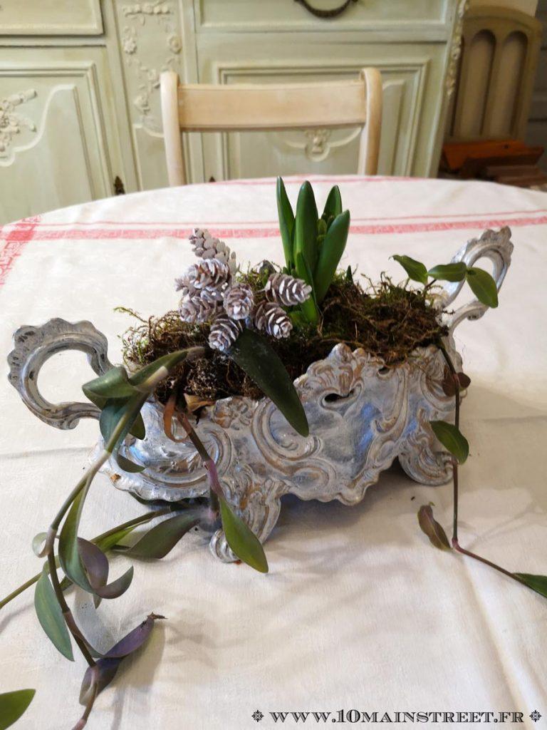 Jardinière de Noël garnie de jacinthes