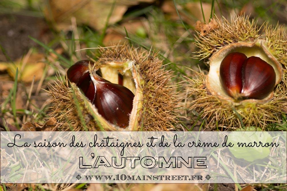 L'automne, c'est la saison des châtaignes et de la crème de marron !