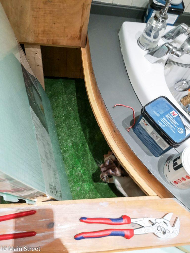 Dinah sous la baignoire