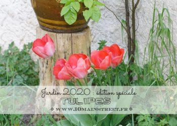Jardin 2020 : édition spéciale tulipes
