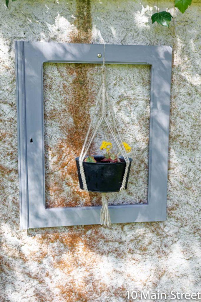 Sedum palmerii suspendu dans une porte de buffet utilisée comme encadrement