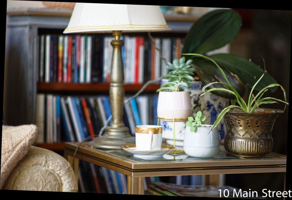 Plantes vertes dans le salon