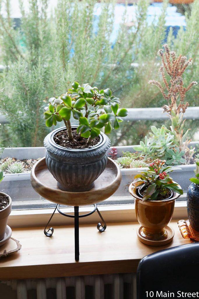 Photophore converti en support à plante