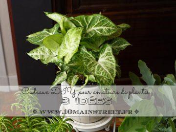 Cadeaux DIY pour amateurs de plantes : 3 idées