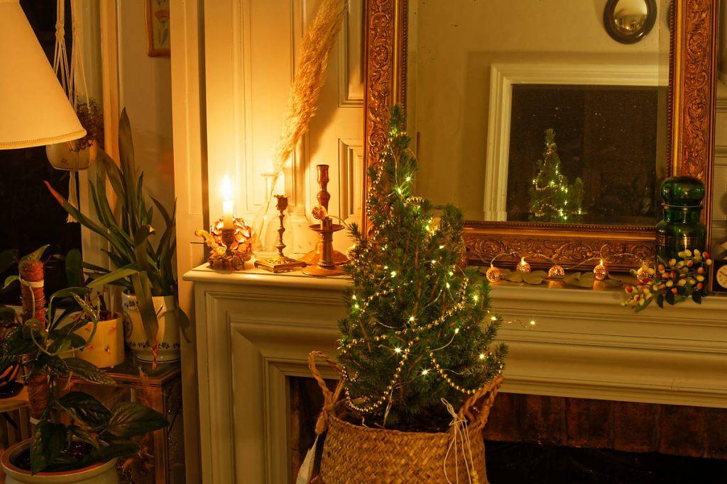 Sapin de Noël miniature