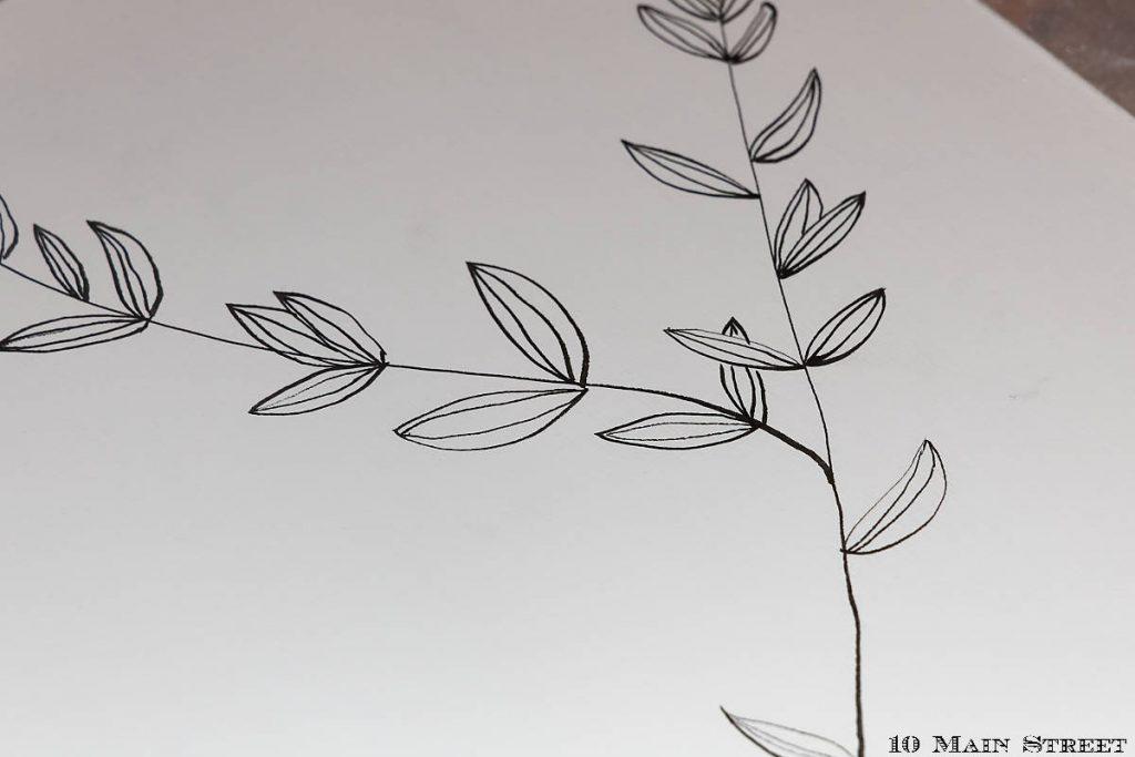 Feuilles de peperomia stylisées