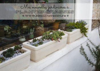 Mes nouvelles jardinières à plantes grasses