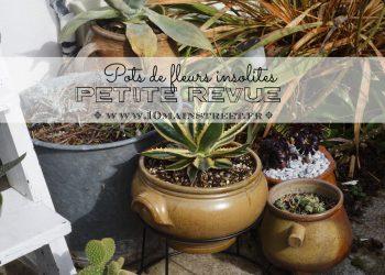 Pots de fleurs insolites : petite revue