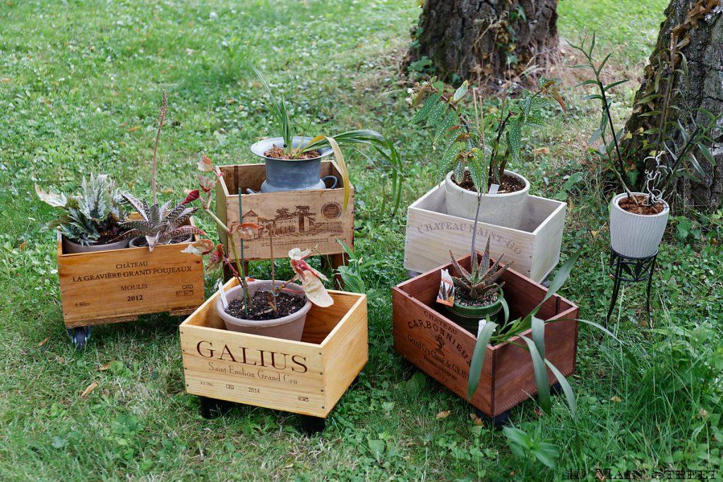 Caisses à vin recyclées en support à plantes