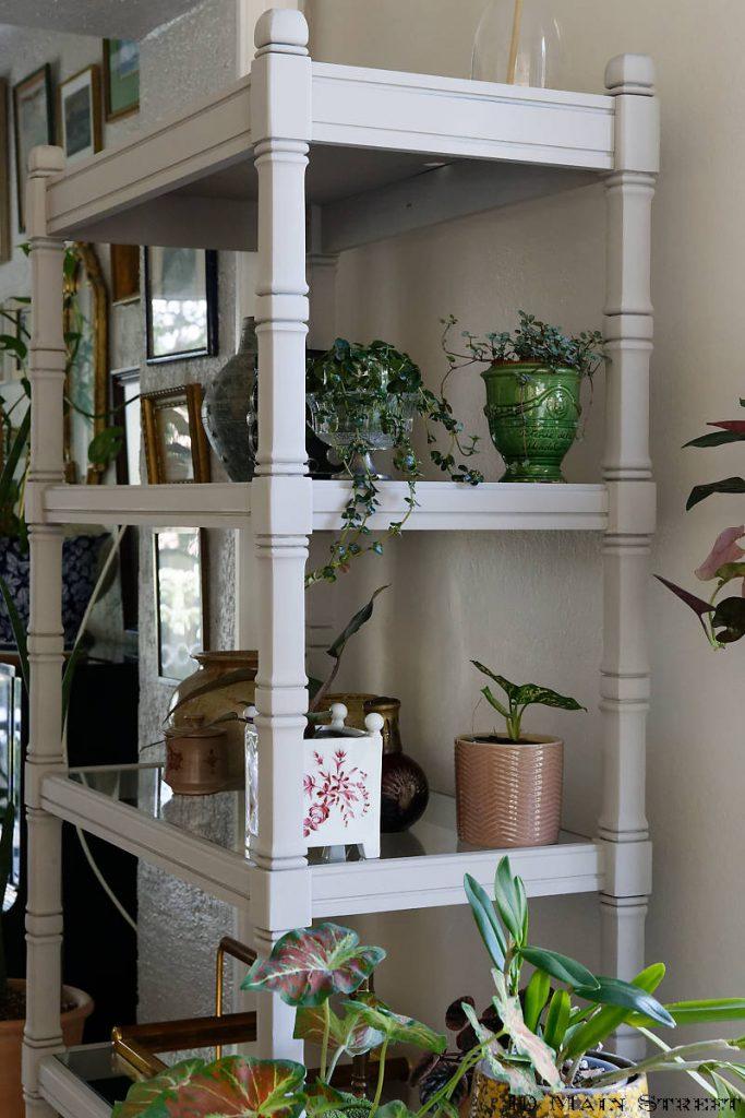 Plantes sur le côté de l'étagère