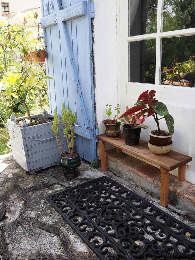Plantes sur le côté est de la terrasse