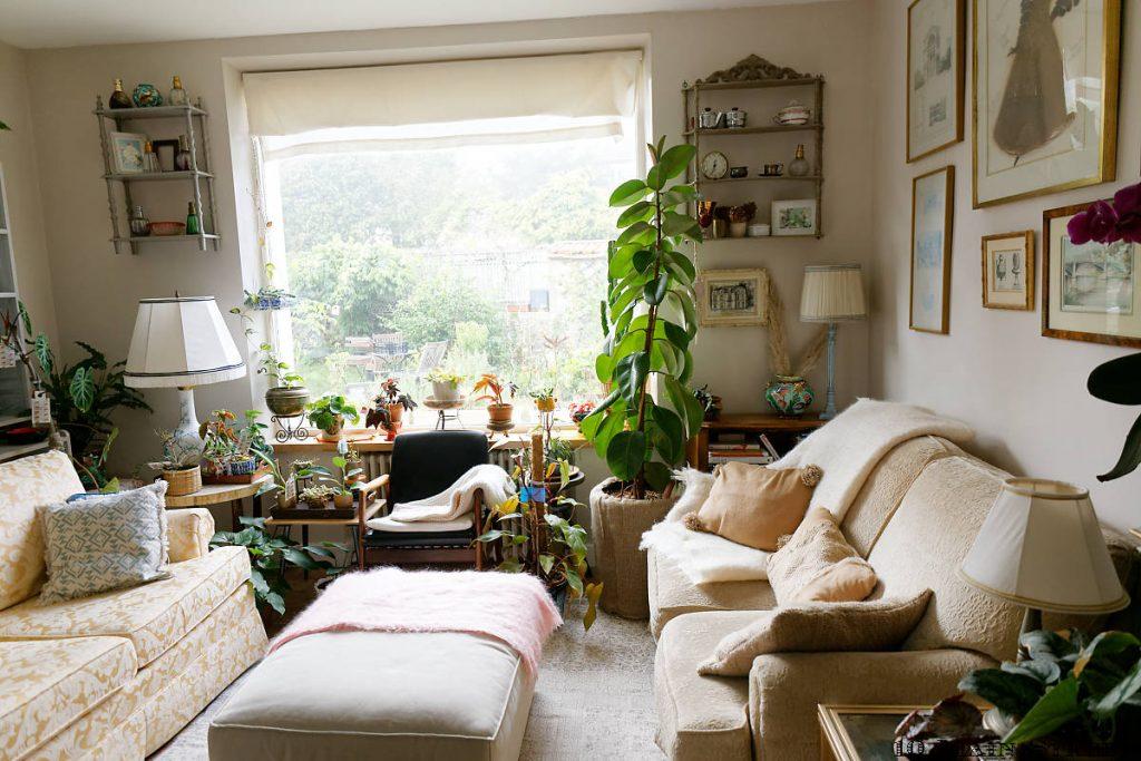 Le salon et toutes ses plantes